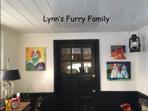 Perfect for this awesome home's mud room...Linda's portraits of these pups produce smiles.